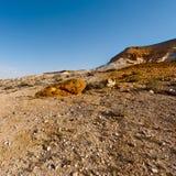 Negev Desert in Israel Stock Images