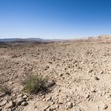 Stone Desert in Israel Royalty Free Stock Photos