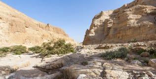 Stone desert in Israel Stock Image