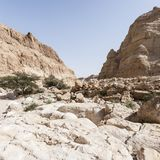 Stone desert in Israel. Rocky hills of the Negev Desert in Israel. Breathtaking landscape of the desert rock formations in the Southern Israel Desert Stock Images
