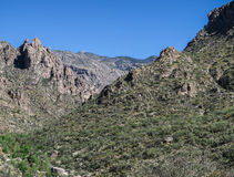Rocky hills in Sabino Canyon, Tucson, Arizona. Rocky hilltops covered with saguaro cactus in Sabino Canyon, Tucson, ARizona Stock Photo