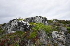 Dolmoy,Hitra - Norway royalty free stock photos