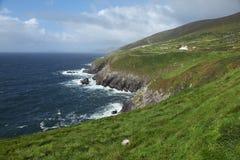 Rocky Irish coast. In Dunquin on Dingle peninsula in Ireland Royalty Free Stock Images