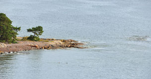 Rocky island in Baltic Sea Royalty Free Stock Images