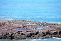 Rocky Island in Blue Ocean Royalty Free Stock Photography