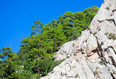 Rocky island green canyon Royalty Free Stock Images