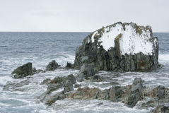 Rocky island in the Southern Ocean. Stock Images