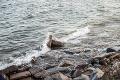 Rocky lake shore. Waves hitting the rocky shore of Lake Superior Royalty Free Stock Images