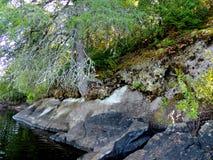 Rocky Lakeside Ecosystem Fotografie Stock