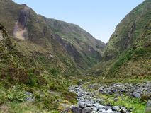 Rocky landscape at the Azores Royalty Free Stock Photo