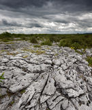 Rocky landscape of The Burren in County Clare, Ireland. Rocky landscape of the Limestone Pavement Mountains in The Burren in County Clare, Ireland Royalty Free Stock Images