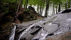 Flowing water in rocky landscape in wild forest. Water stream in rocky path. Rocky landscape with flowing water in deep wild forest. Close-up of waterfall in stock footage