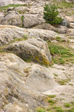 Rocky landscape in the Harz Royalty Free Stock Images