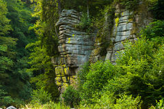 Rocky landscape by the river Murg in the Murg valley Stock Photography