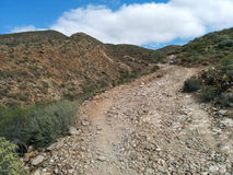 Rocky landscape of Tenerife Stock Photos