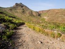 Rocky landscape of Tenerife Stock Image