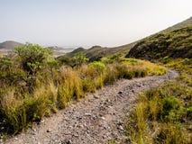 Rocky landscape of Tenerife Stock Photography