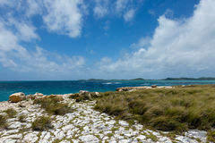 Rocky Limestone Coastline at Devil's Bridge Antigua Stock Image