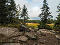 Rocky Marsh Algonquin Provincial Park Royalty Free Stock Photography