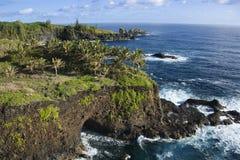 Rocky Maui coast. Royalty Free Stock Photos