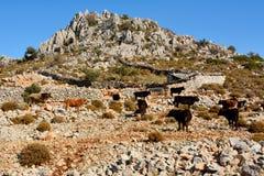 Rocky Mediterranean-Küstenlinie in Taslica-Dorf nahe Marmaris r lizenzfreie stockfotografie