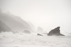 Rocky Mendocine Shore in Fog Stock Images