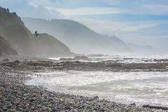 Rocky, misty and foggy Oregon coast with cliffs, forests, people and pelican flying in distance Royalty Free Stock Photo