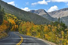 Rocky Mountain Aspen. Trail Ridge Road on the East side of Rocky Mountain National Park royalty free stock image