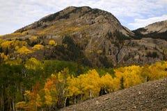 Rocky Mountain Autumn nära krönad Bute colorado Fotografering för Bildbyråer