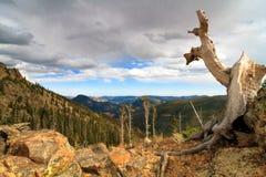 Rocky Mountain Autumn Views stock afbeeldingen