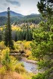 Rocky Mountain Bear Lake Fotos de archivo
