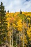 Rocky Mountain Bear Lake Imagen de archivo libre de regalías