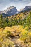 Rocky Mountain Park Road to Bear Lake. Headed to Bear Lake, Rocky Mountain National Park, Aspens in Fall colors royalty free stock image