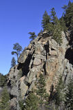 Rocky Mountain Cliff and Pine Trees Royalty Free Stock Image