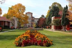 Rocky Mountain College van Kunst en Ontwerp Stock Foto