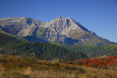 Rocky Mountain Fall Stock Photography