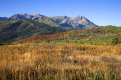 Rocky Mountain Fall Stock Photos