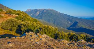 Rocky mountain forest with Mediterranean Sea. The last sunshine of the evening hours illuminates the high areas of the Pla de la Calma mountain plateau in stock photography