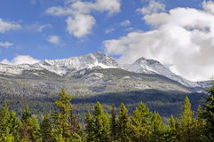 Rocky mountain with green trees and snow. Alberta,canada Stock Photos