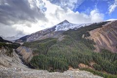 Rocky mountain with green trees, snow, and stream. In Jasper National Park, Alberta, Canada Royalty Free Stock Photo