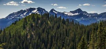 Rocky Mountain Heaven, Wilson Peak, Telluride, Colorado Royalty Free Stock Photos