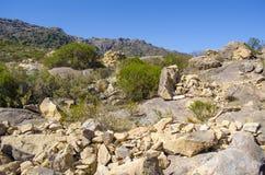 rocky mountain krajobrazu Zdjęcie Stock