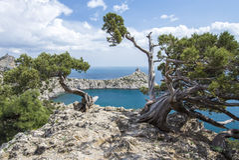 rocky mountain krajobrazu obraz royalty free