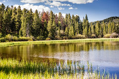 Rocky Mountain Lake Stock Image