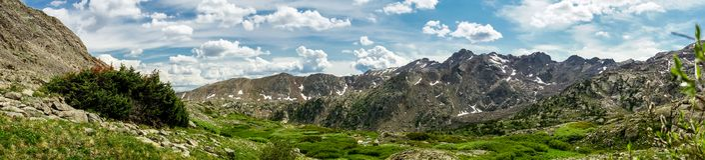 Rocky Mountain Landscape - árboles y montañas en 14.000 pies Fotos de archivo