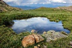 Rocky Mountain Landscape - árboles y montañas en 14.000 pies Imagen de archivo libre de regalías