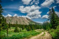 Rocky Mountain Landscape - árboles y montañas en 14.000 pies Fotografía de archivo