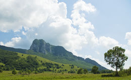 Rocky mountain landscape. Landscape with rocky mountain in the summer and green fields, in Transylvania Royalty Free Stock Images