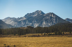 Rocky Mountain landscape in Idaho. Rocky peaks, forest, and meadow in rural wilderness between Ketchum and Stanley, Idaho royalty free stock image