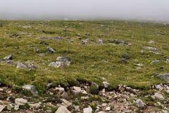Rocky mountain landscape mt evans colorado Stock Photos